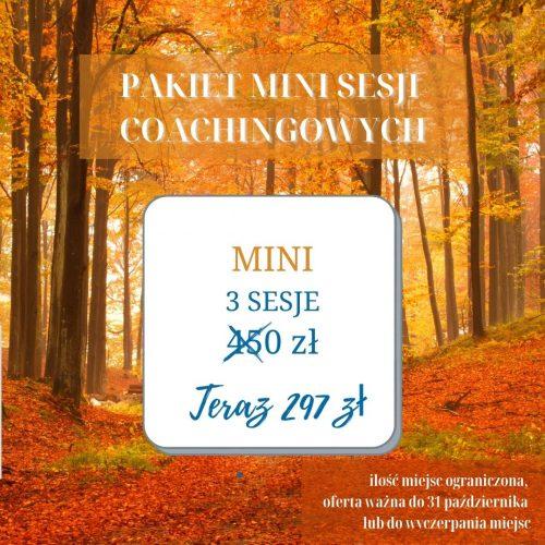 pakiet mini sesji coachingowych